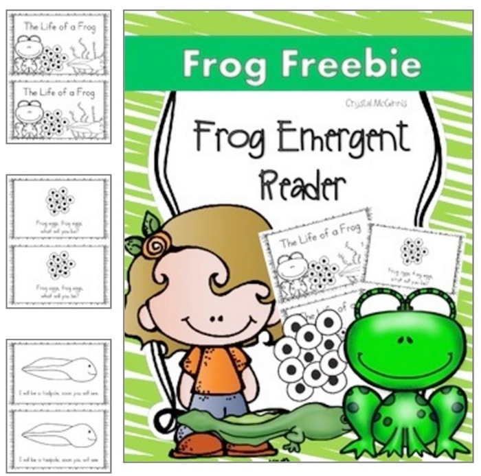 13 Frog Life Cycle Resources and Printables - Life Cycle of a Frog Emergent Reader - Teach Junkie