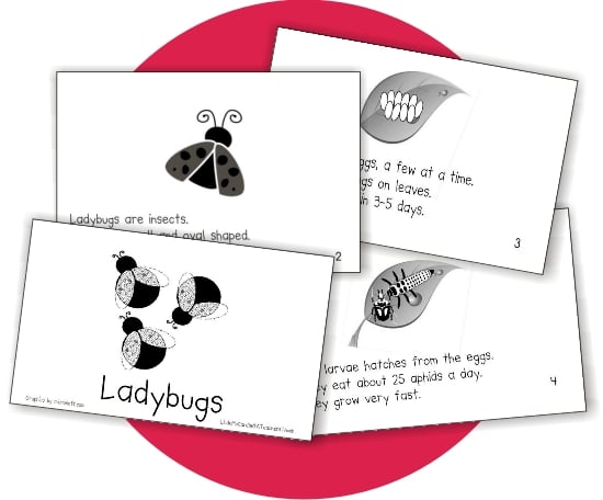 Teach Junkie: Ladybugs Emergent Reader
