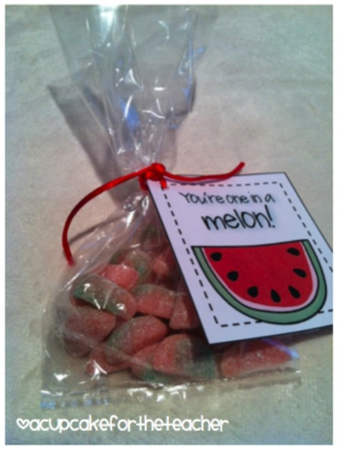 Teach Junkie: 17 Simple End of the school Year Student Gifts and Writing Activities - You're one in a melon tag - add to candy bag