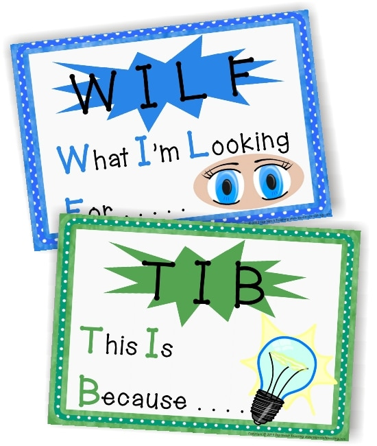 Teach Junkie: 2 Classroom Management Expectations Poster Sets