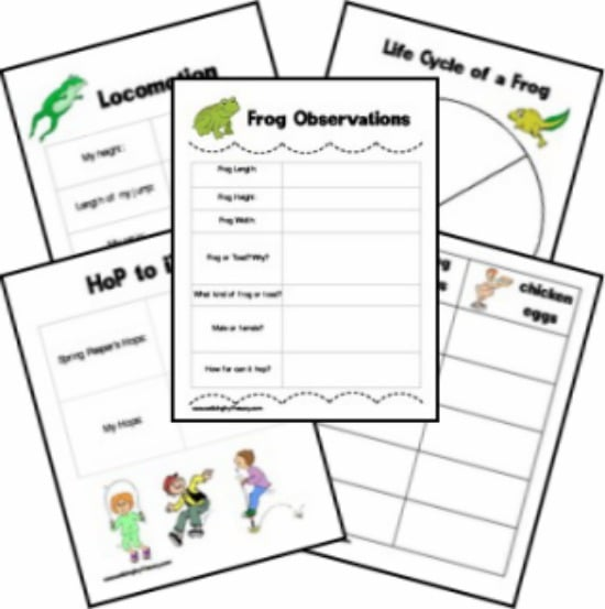 Teach Junkie: 25 Easy Frog and Toad Ideas and Activities - Frog Observations