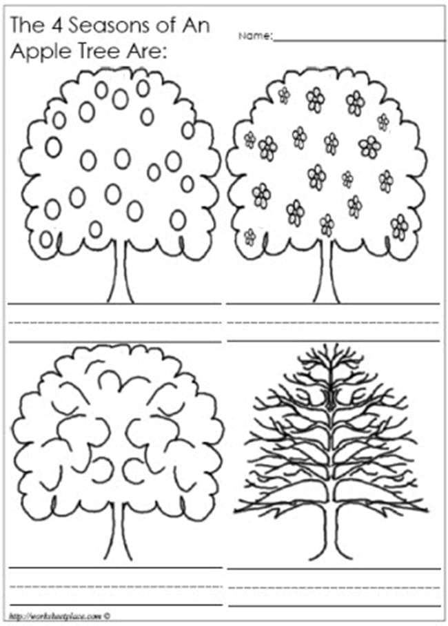 All-4-seasons-worksheet