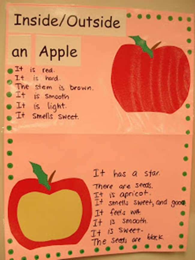 Apple inside out