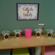 Catch a Habit: Happy Kids Classroom Management
