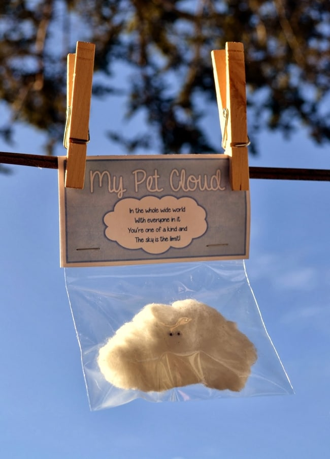 Clouds for Kids 23 Smart Ideas My Pet Cloud Teach Junkie