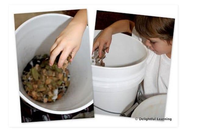 Earthworm Composting - Teach Junkie