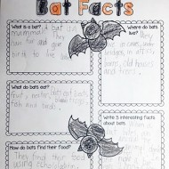 Learning About Bats: Graphic Organizer and 3 Videos