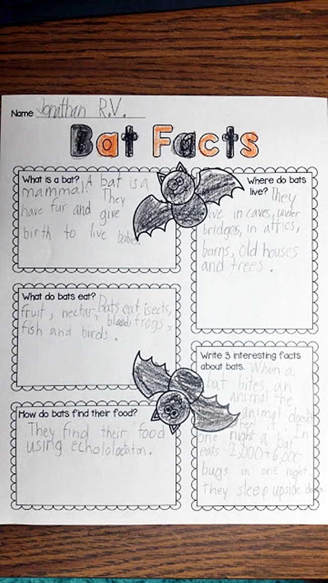 Learning About Bats Graphic Organizer and 3 Videos - Teach Junkie