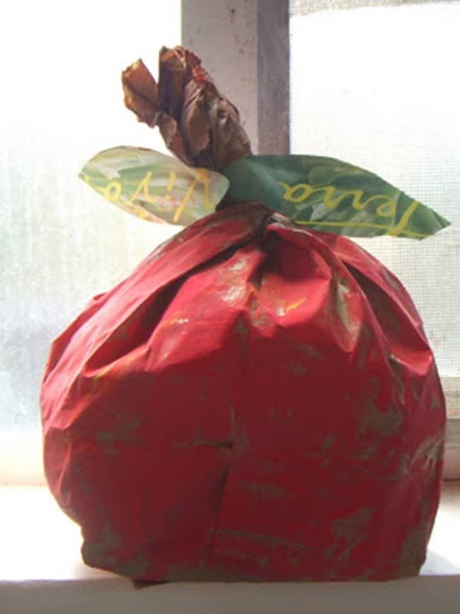 Paper Bag Apple