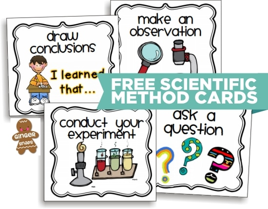 Teach Junkie: 10 Scientific Method Tools to Make Teaching Science Easier - Scientific Method Printable Cards