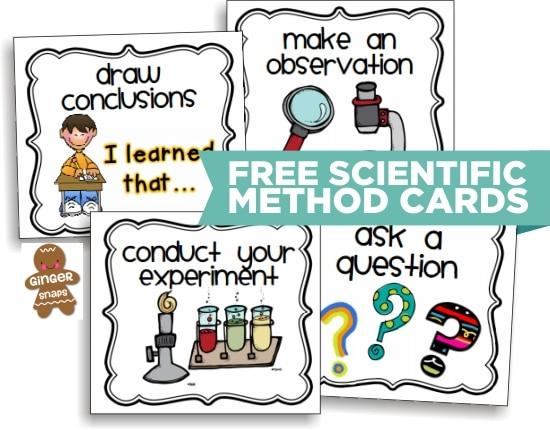 Teach Junkie: 10 Scientific Method Tools to Make Teaching Science Easier - Scientific Method Printable Cards